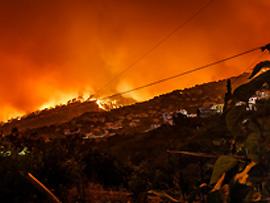 Verhaltenstipps: Waldbrand