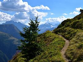 Verhaltenstipps: Wandern