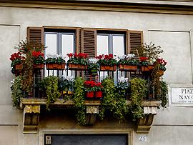 Fensterbank in Italien mit farbenfrohen Blumen