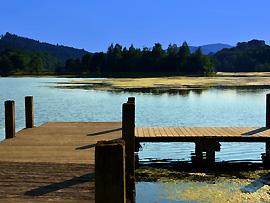 Wasserqualität von natürlichen Gewässern