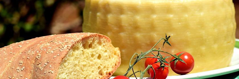 Käse Spezialitäten Griechenlands