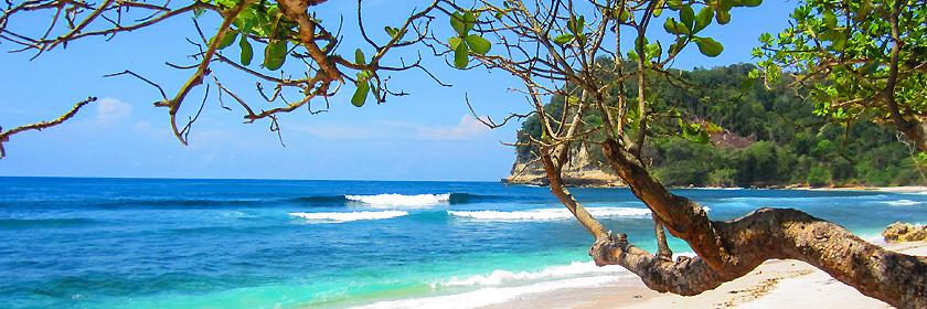 Reiseinformationen für Niue (Selbstverwaltetes Territorium in freier Assoziierung mit Neuseeland)