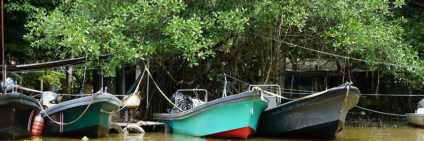 Versicherungsschutz für die Republik Suriname